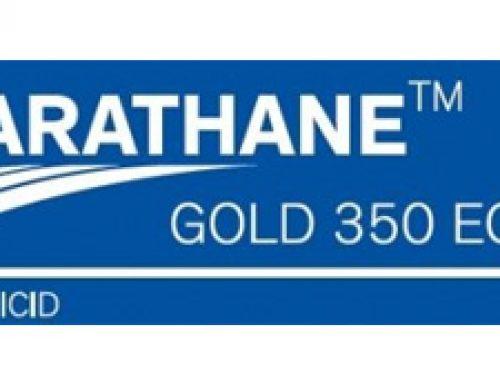 KARATHANE GOLD 350 EC 1l -pepelnica (vinova loza,jagoda, krastavac,tikvice,lubenica)