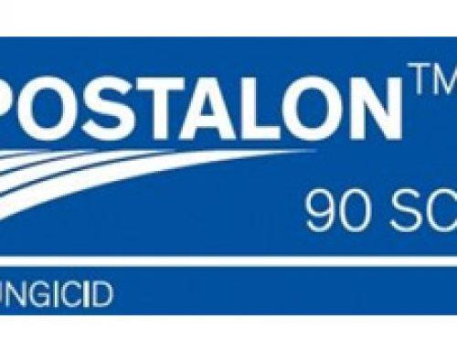 POSTALON 90 SC 1kg -pepelnica (vinova loza)
